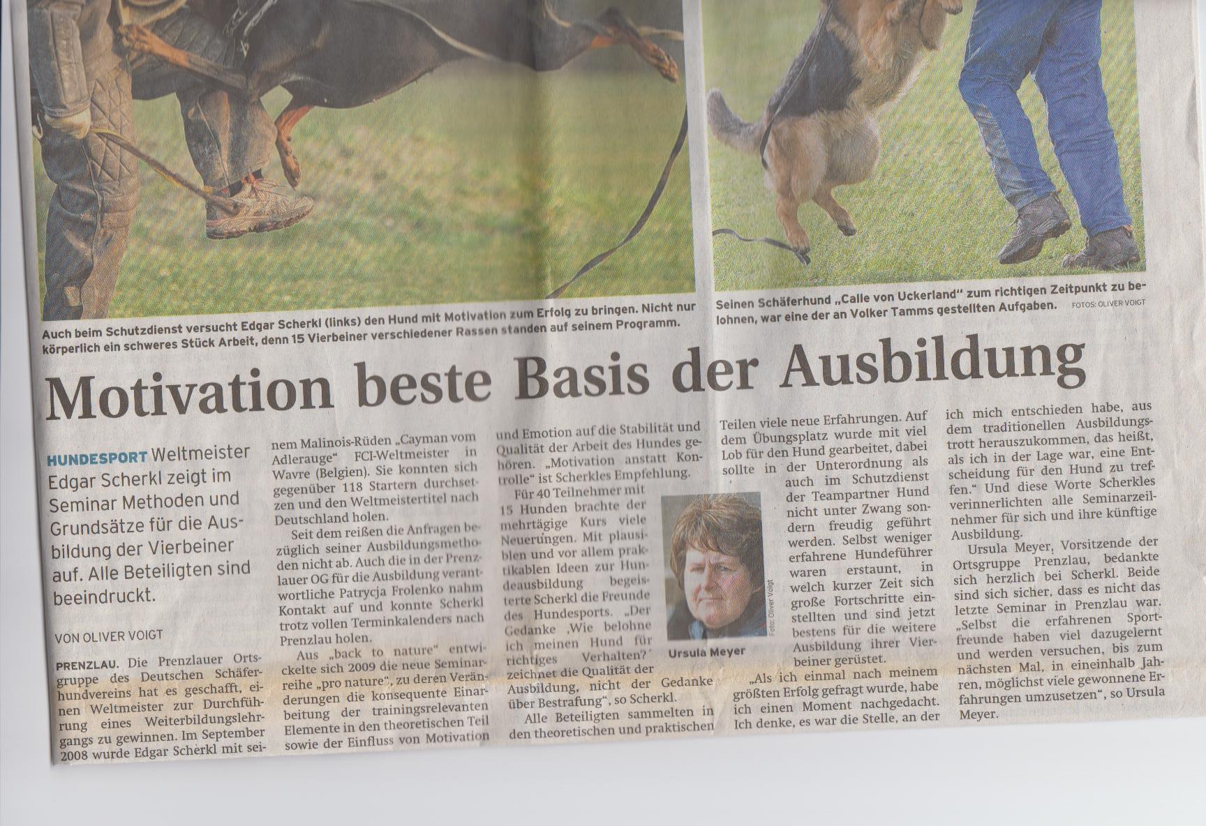 Nordkurier 28.3.2009 - Scherkl Artikel